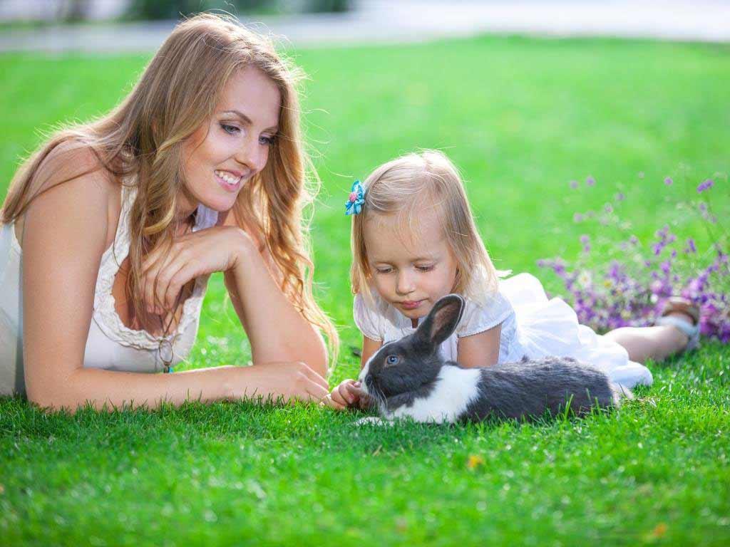 Wer sich ein Haustier anschafft, muss Verantwortung übernehmen. copyright: Envato / photobac