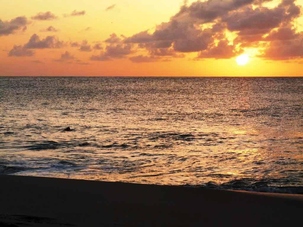 Traumstrände erwarten die Inselbesucher in der Karibik. copyright: pixabay.com