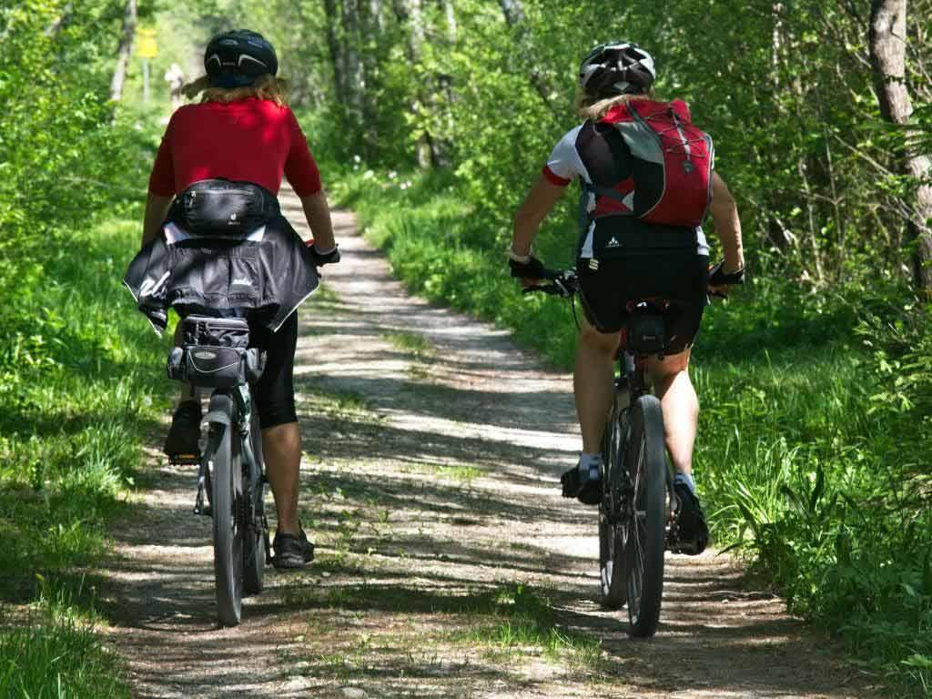Radsport auf höchstem Niveau copyright: pixabay.com
