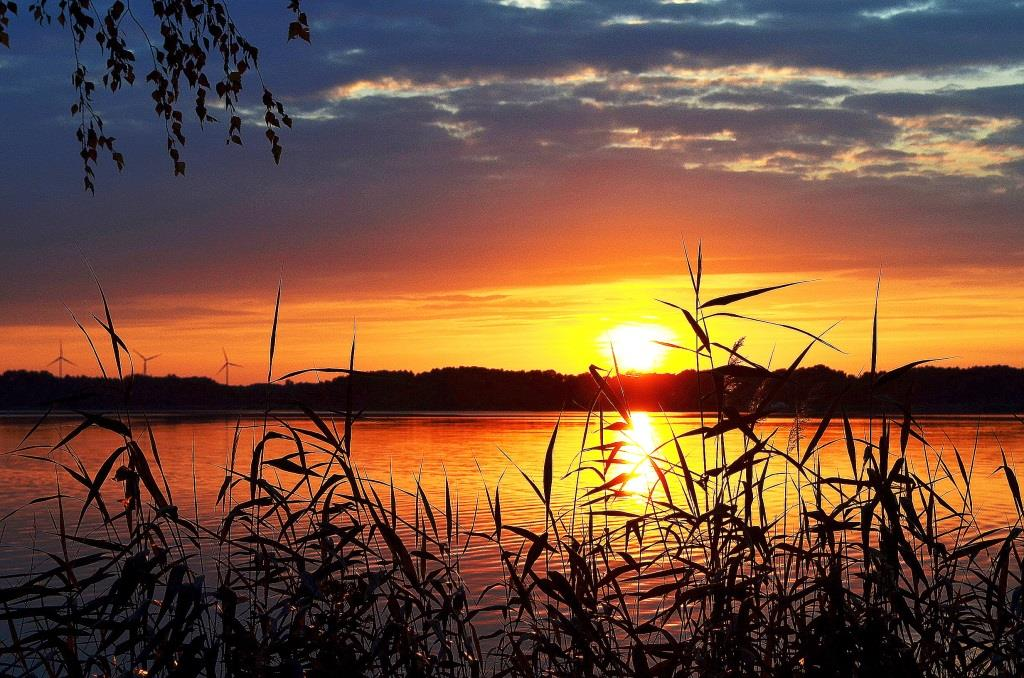 Zum Abkühlen? Natürlich an den See! copyright: pixabay.com