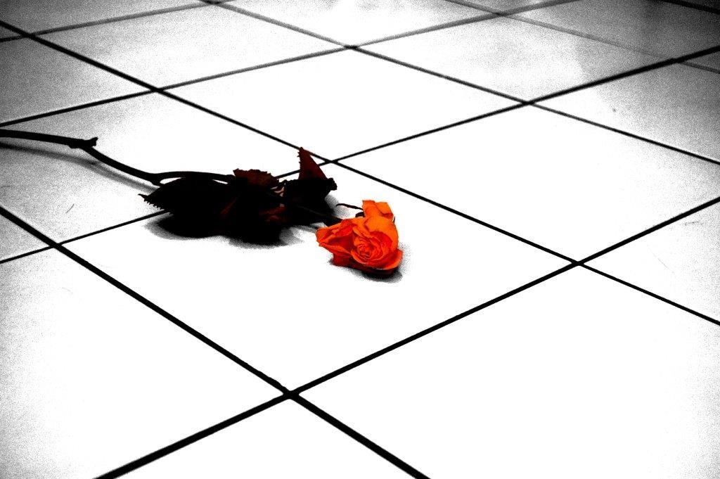 Trennungsschmerz und Liebeskummer - Was hilft dagegen? copyright: by-sassi / pixelio.de