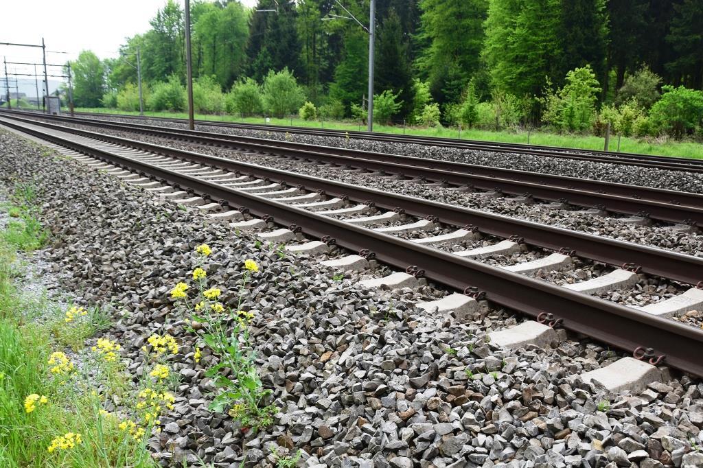 Warnstreik am Mittwoch trifft Stadtbahn- und Busverkehr copyright: berggeist007 / pixelio.de