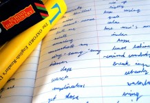 Sprachreisen ins Ausland: Nirgends lernt es sich schöner copyright: Jakub Sproski / pixelio.de