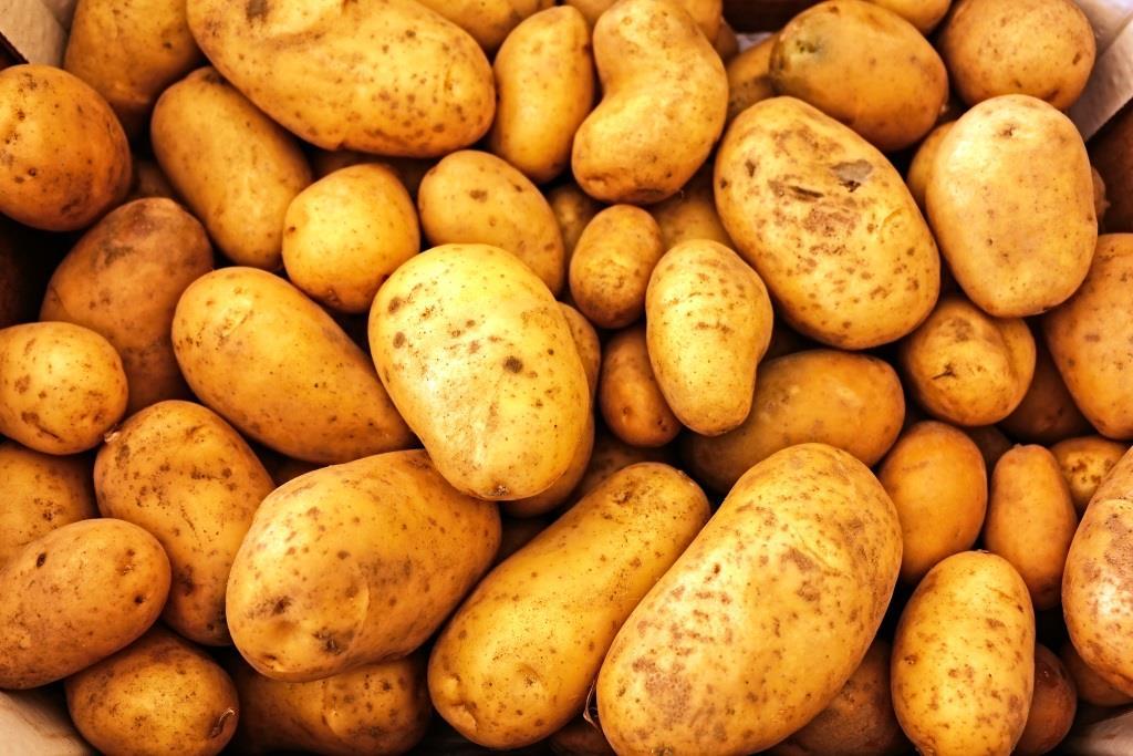 Pommes frites aus Deutschen Kartoffeln schmecken am besten copyright: pixabay.com