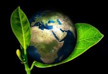 Nachhaltigkeit als Trend: Umweltfreundlich vom Auto bis zur Brille copyright: pixabay.com