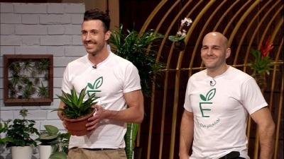 500.000 Euro wünschen sich Philip Ehlers (38, l.) und Jan Nieling (36) von den 'Löwen'. Dafür bieten sie den potentiellen Investoren 20 Prozent an ihrer Firma Evrgreen - einem Online-Shop für Pflanzen. Foto: VOX