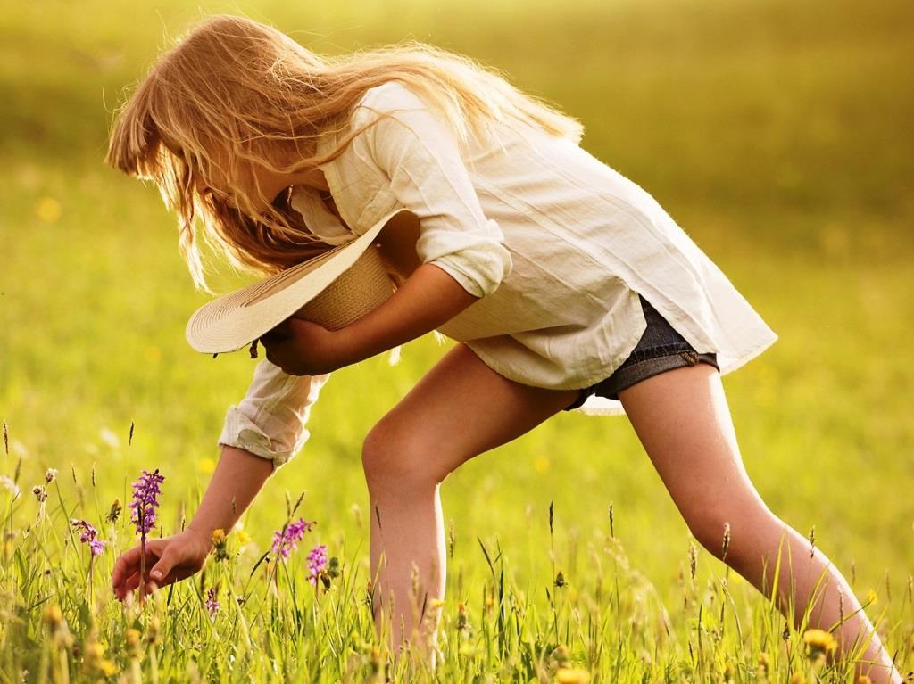 Florale Selbstbedienung – ist es erlaubt, Blumen im Park zu pflücken? copyright: pixabay.com
