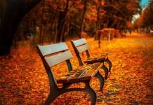 Tipps, um dem Herbstblues entkommen - copyright: pixabay.com