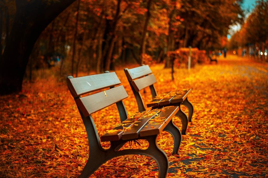 Tipps, um dem Herbst-Blues entkommen - copyright: pixabay.com
