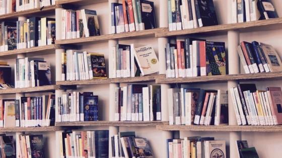 Stadtbibliothek – Nicht für Leseratten interessant - copyright: pixabay.com