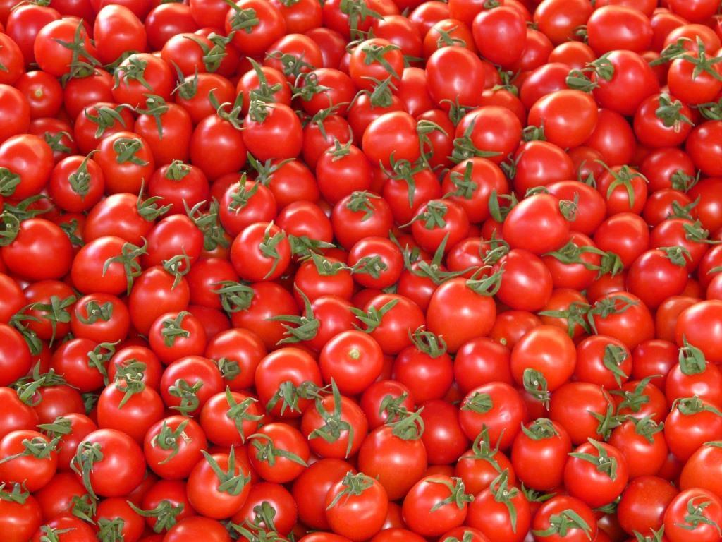 Jährlich 5 Milliarden Tomatensamen für einzigartigen Geschmack copyright: pixabay.com