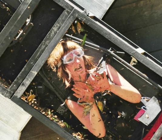 Hanka Rackwitz (Foto) und Nicole müssen zu ihrer ersten Dschungelprüfung antreten. - Foto: RTL / Stefan Menne Alle Infos zu Ich bin ein Star - Holt mich hier raus! im Special bei RTL.de