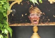Tag 13 im Dschungelcamp: Alle Promis müssen in die Dschungelprüfung - Jens Büchner wurde rausgewählt - Foto: RTL / Stefan Menne Alle Infos zu Ich bin ein Star - Holt mich hier raus! im Special bei RTL.de