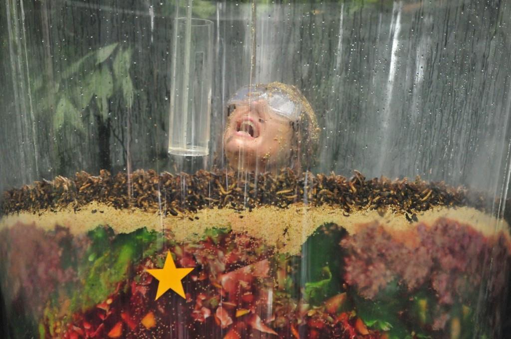 """Zwischen Fisch- und Fleischabfällen, Schleim, verfaulten Grünzeugs und jeder Menge Insekten - Foto: RTL / Stefan Menne <a href=""""http://www.rtl.de/cms/sendungen/ich-bin-ein-star.html"""" title=""""Alle Infos zu Ich bin ein Star - Holt mich hier raus! im Special bei RTL.de"""" target=""""_blank"""" rel=""""nofollow"""">Alle Infos zu Ich bin ein Star - Holt mich hier raus! im Special bei RTL.de</a>"""