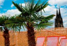 Die besten Freizeit- und Ausflugstipps für den Sommer in Köln und der Region copyright: CityNEWS / Alex Weis