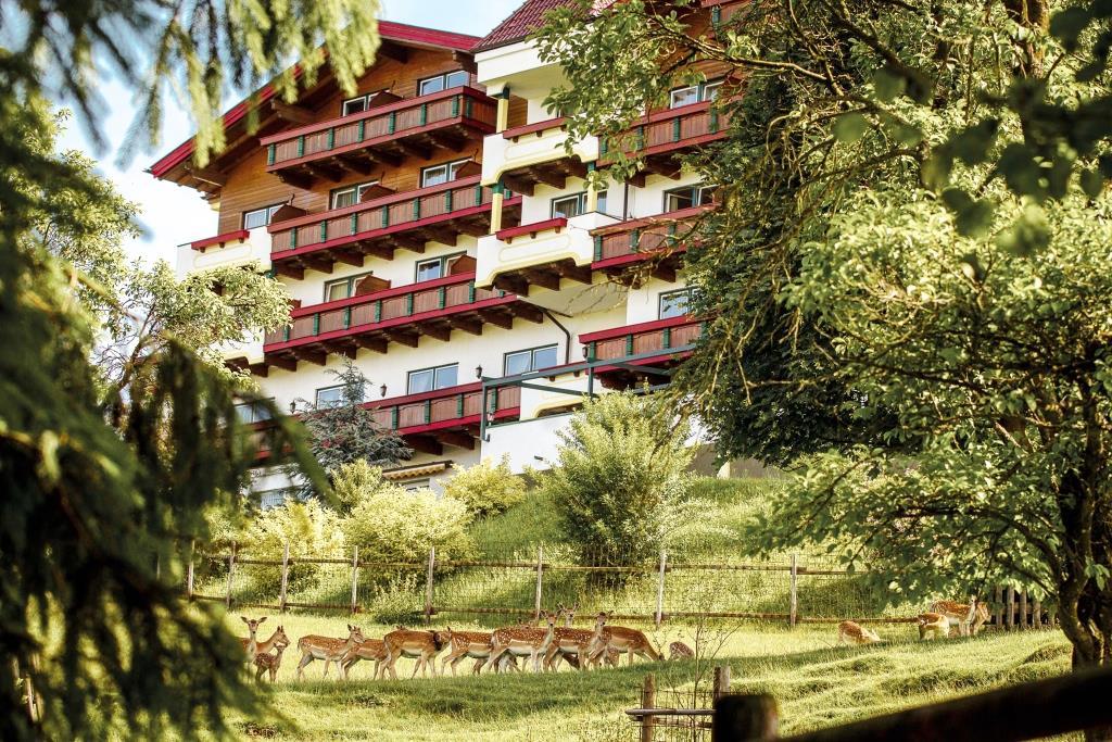 Gewinnspiel: Abschalten in der Eifel im Wohlfühlhotel Kastenholz! - copyright: Moritz Dornbusch