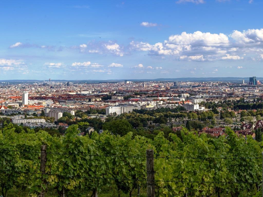 Vom Wilhelminenberg hat man eine fantastische Aussicht auf Wien - copyright: pixabay.com
