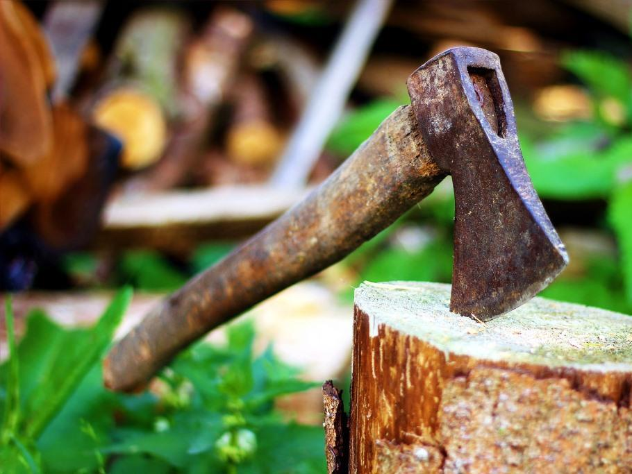 Wann darf ein Maibaum selbst geschlagen werden? copyright: pixabay.com