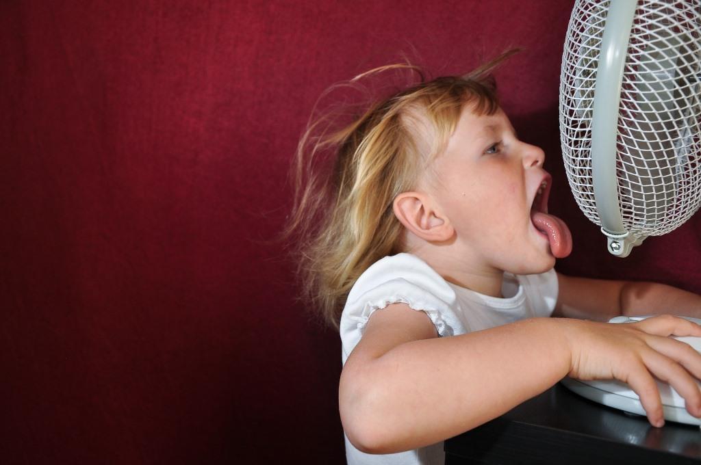 Zu viel Luftzug kann zu Erkältungen oder einem steifen Nacken führen. - copyright: pixabay.com