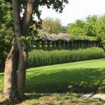 Friedenspark endlich saniert – Kölner Grün Stiftung spendete 120.000 Euro - copyright: Kölner Grün Stiftung