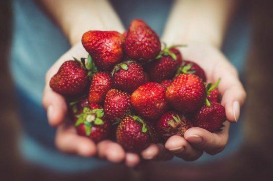Naschen Sie sich mit Erdberen gesund! - copyright: pixabay.com
