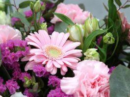 Mit der richtigen Pflege halten Schnittblumen deutlich länger - copyright: pixabay.com