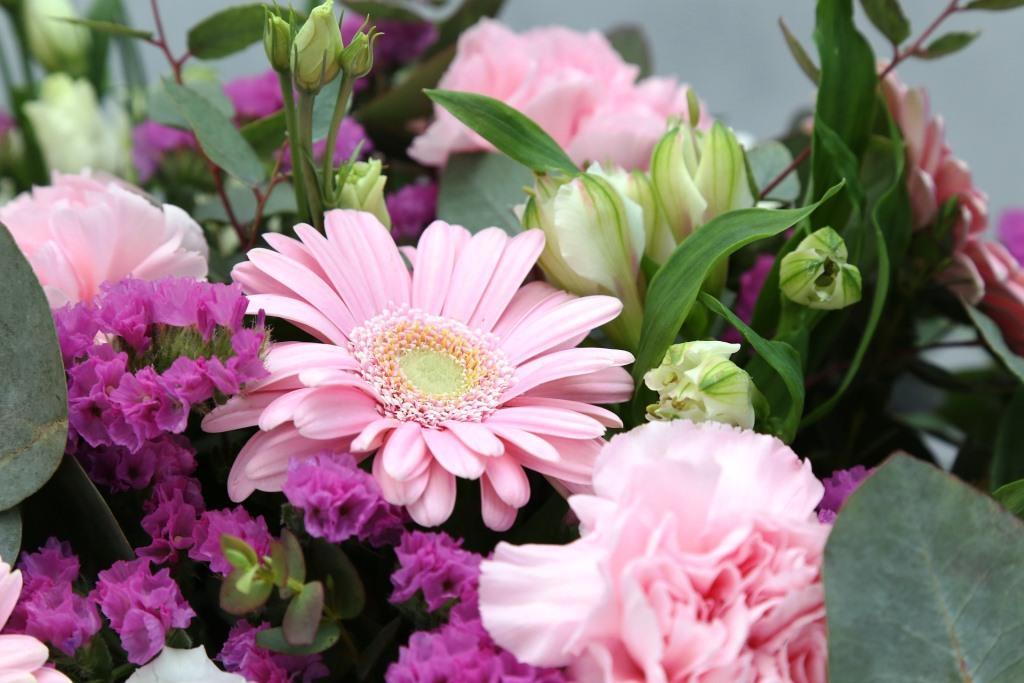 Mit Der Richtigen Pflege Halten Schnittblumen Deutlich Länger