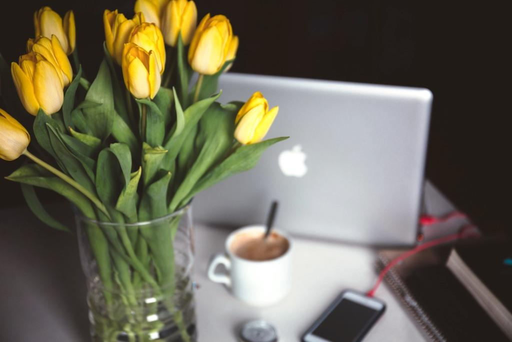 Mit der richtige Pflege die Blütezeit verlängern - copyright: pixabay.com