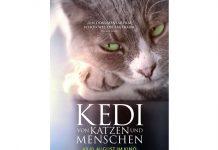 """Pünktlich zum Weltkatzentag am 8. August 2017 wollen die samtpfotigen Streuner auch die Herzen der deutschen Kinozuschauer im Film """"KEDI – Von Katzen und Menschen"""" erobern. - copyright: Weltkino Verleih"""