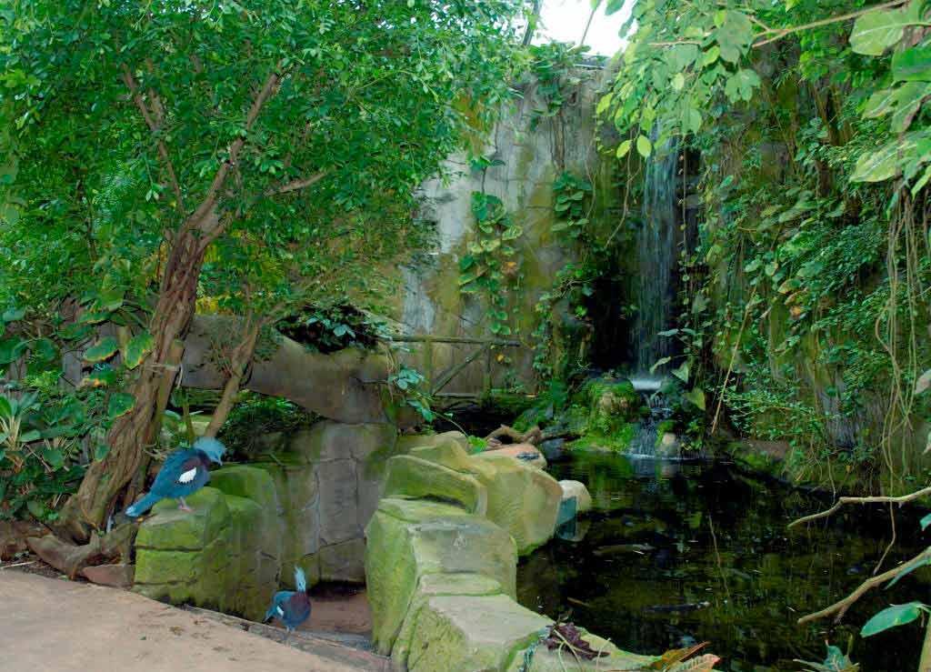 Führung im Tropenhaus - copyright: Kölner Zoo