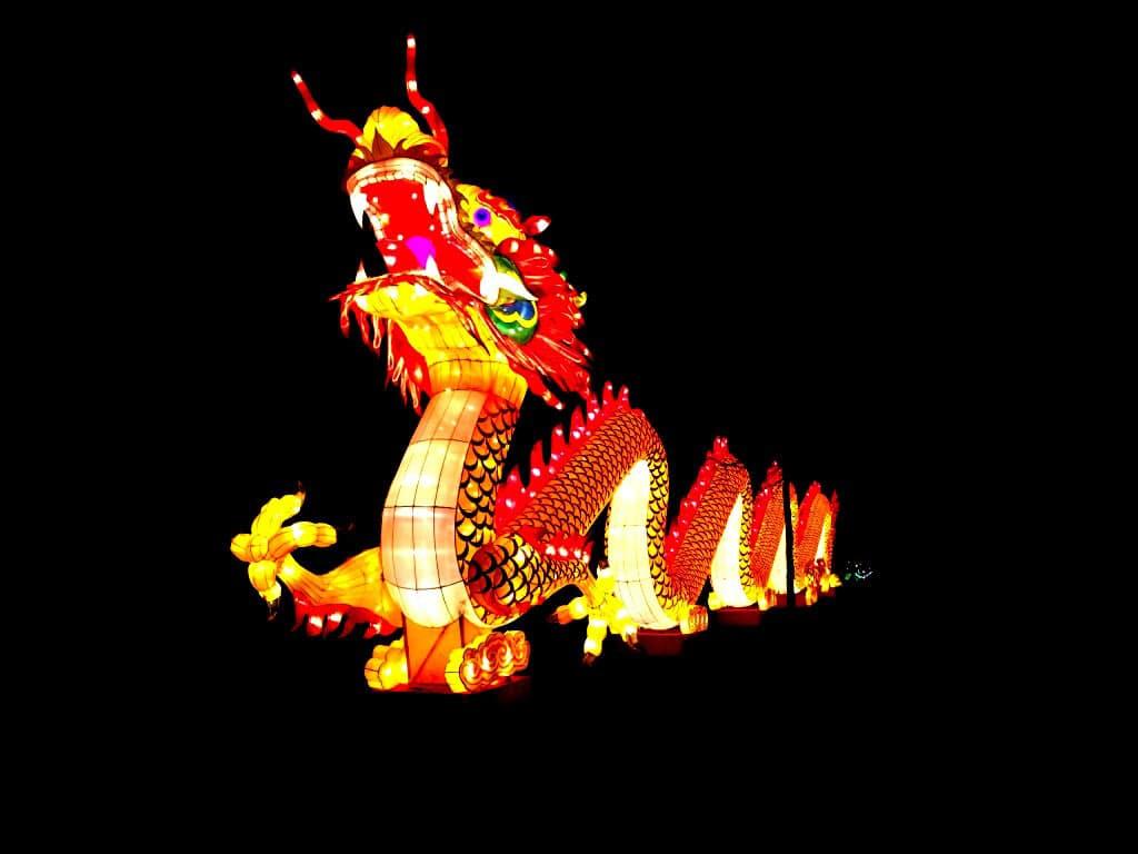 Großes China Light Festival sorgt für strahlende Momente im Kölner Zoo copyright: Kölner Zoo