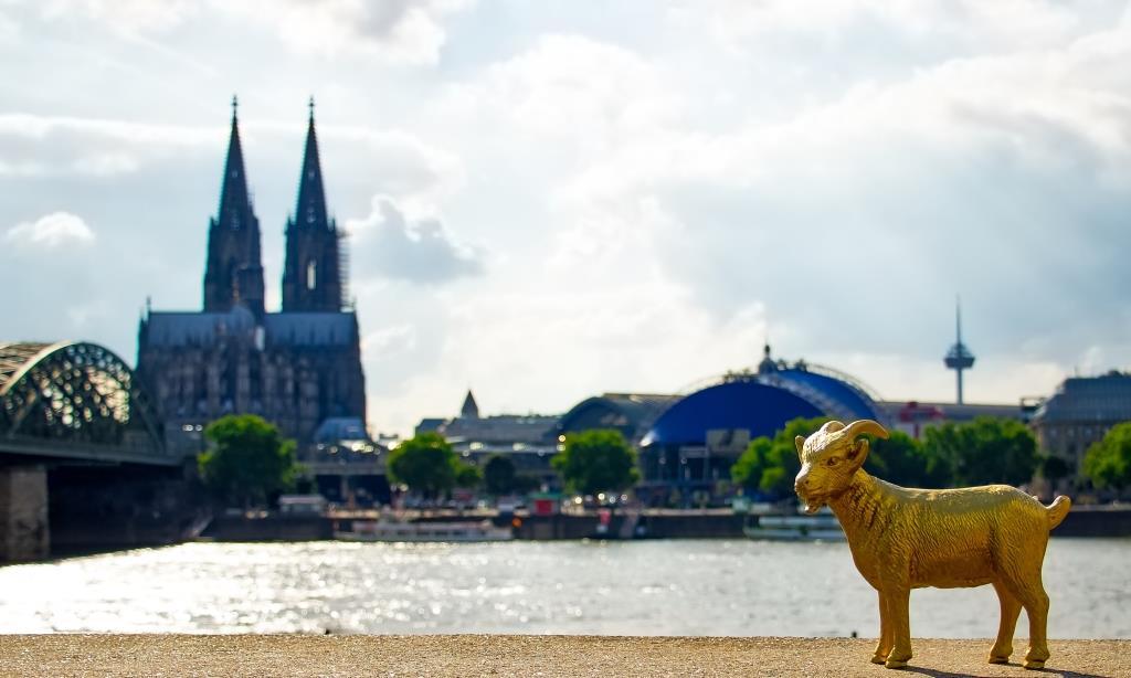 Vom Rheingarten aus hat man die perfekte Sicht auf Kölner Dom, Hohenzollernbrücke, Musical Dome und Fernsehturm. copyright: CityNEWS / Alex Weis