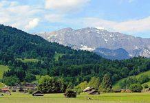 Genießen Sie mit CityNEWS Erholung pur im Bayerischen Wald! copyright: pixabay.com