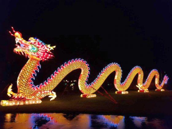 Großes China Light Festival sorgt für strahlende Momente im Kölner Zoo