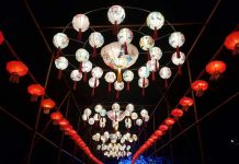Mehr als 100.000 Besucher: Kölner Zoo mit Zuspruch für China Light Festival überaus zufrieden copyright: CityNEWS