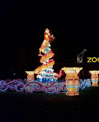 Das Cina Light Festival im Kölner Zoo copyright: CityNEWS