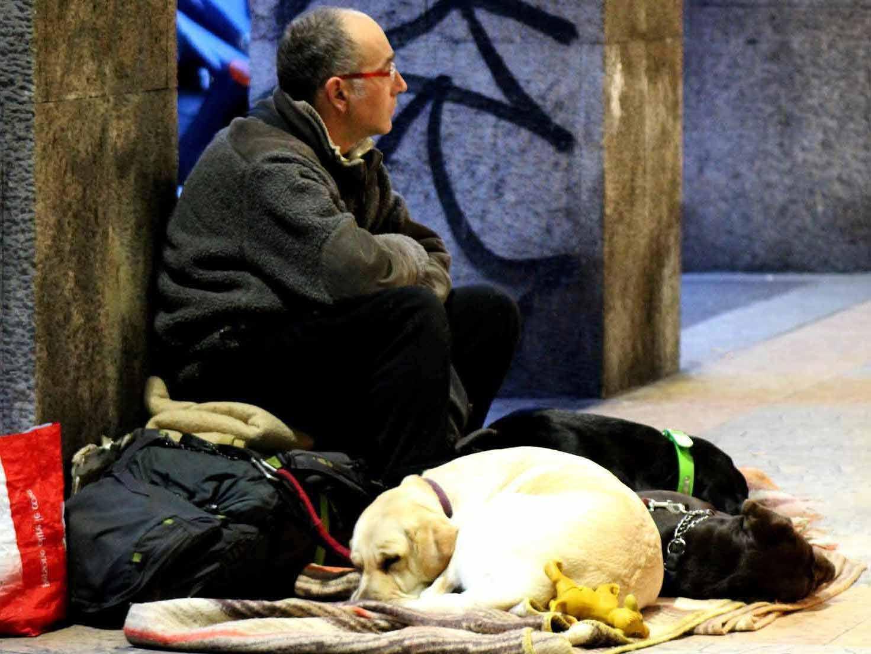 Auch für Obdachlose mit Tieren wird es Unterkünfte in der kalten Jahreszeit geben. copyright: pixabay.com