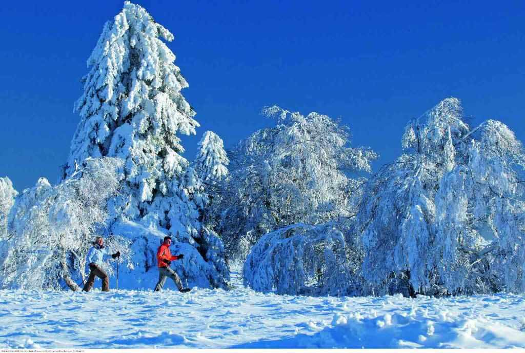 Sauerland: Urlaub im Land der 1.000 Berge copyright: Sauerländer Wandergasthöfe e.V.