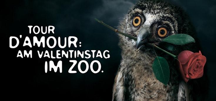 Auf romantische Entdeckungstour im Kölner Zoo copyright: Kölner Zoo