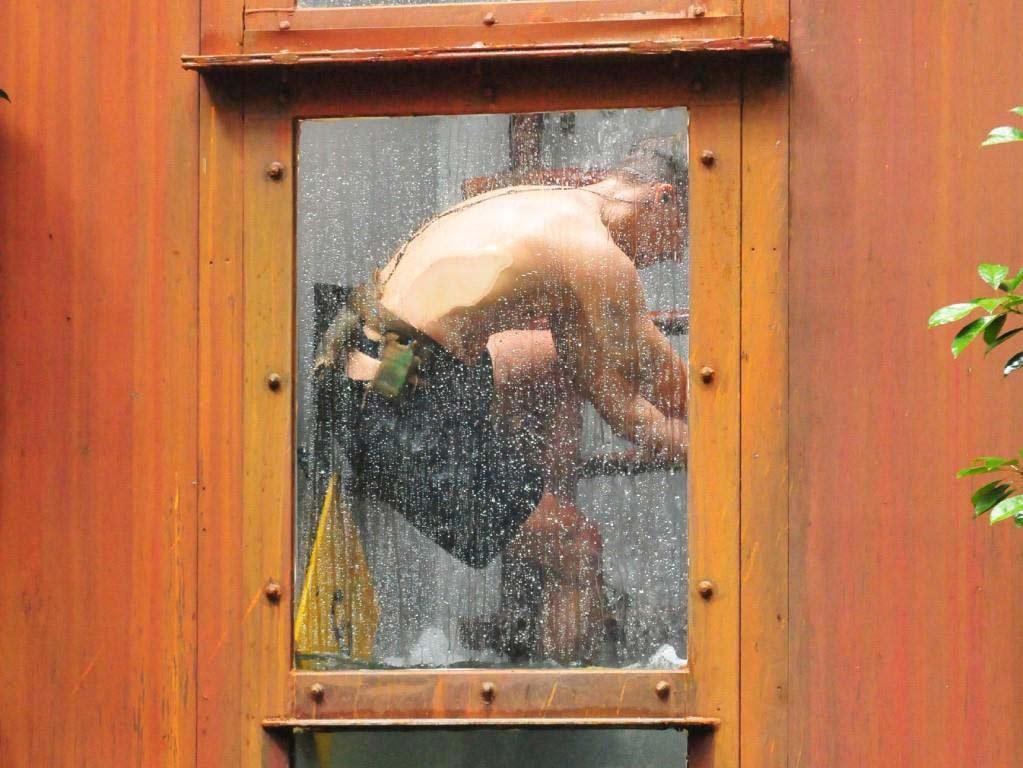 Immer mehr Wasser und Tiere sind in dem Tank. Foto: MG RTL D / Stefan Menne Alle Infos zu 'Ich bin ein Star - Holt mich hier raus!' im Special bei RTL.de