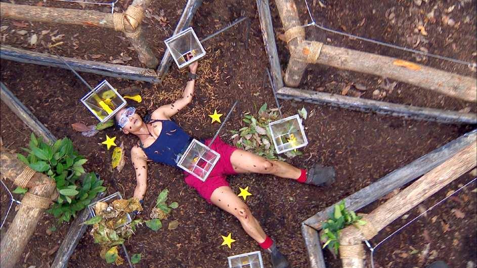 Krabbeltierchen auf dem ganzen Körper. Kattia Vides ist nicht zu beneiden. Foto: MG RTL D / Stefan Menne Alle Infos zu 'Ich bin ein Star - Holt mich hier raus!' im Special bei RTL.de