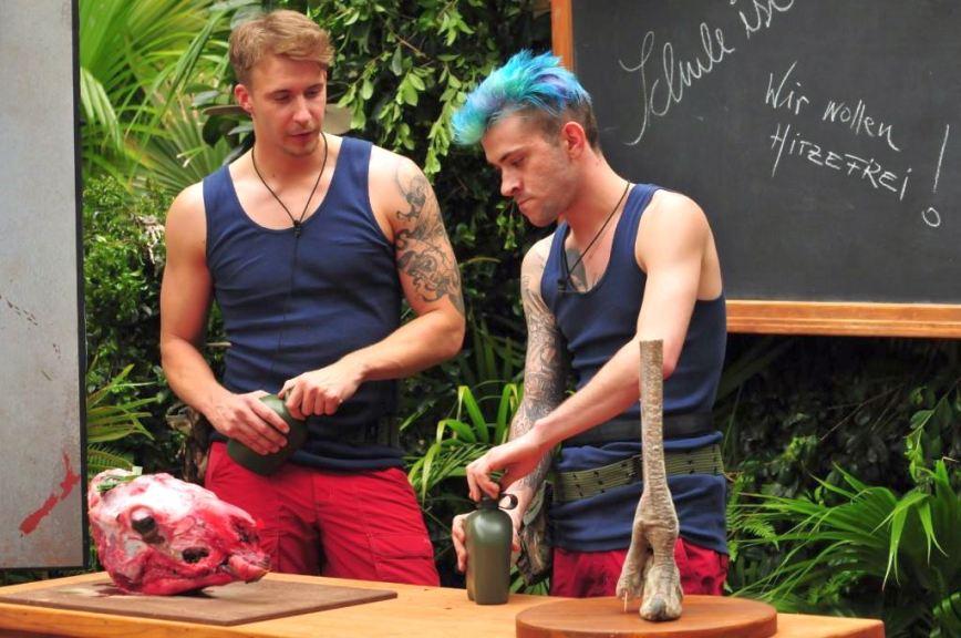 Erste Stunde: Biologie mit David und Daniele Foto: MG RTL D / Stefan Menne