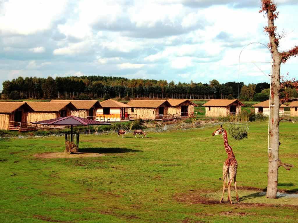 Serengeti-Park in Hodenhagen copyright: Serengeti-Park