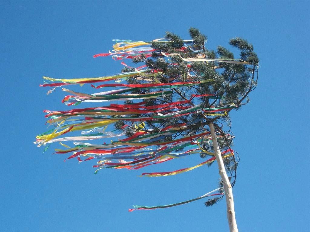 Wer einen Maibaum stiehlt macht sich strafbar! copyright: pixabay.com