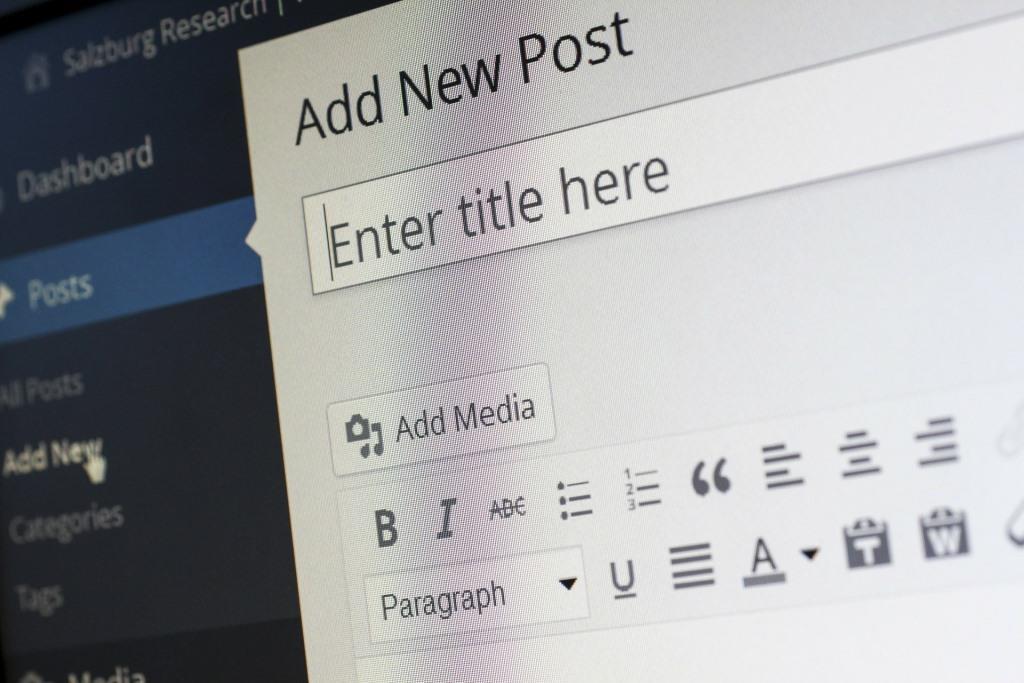 Inzwischen werden ganze 30 Prozent aller Seiten im Internet mit WordPress erstellt. copyright:pixabay.com