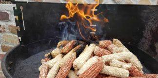 Umweltbewusst grillen mit Mais: Alternative zu Gas und Kohle? copyright: privat