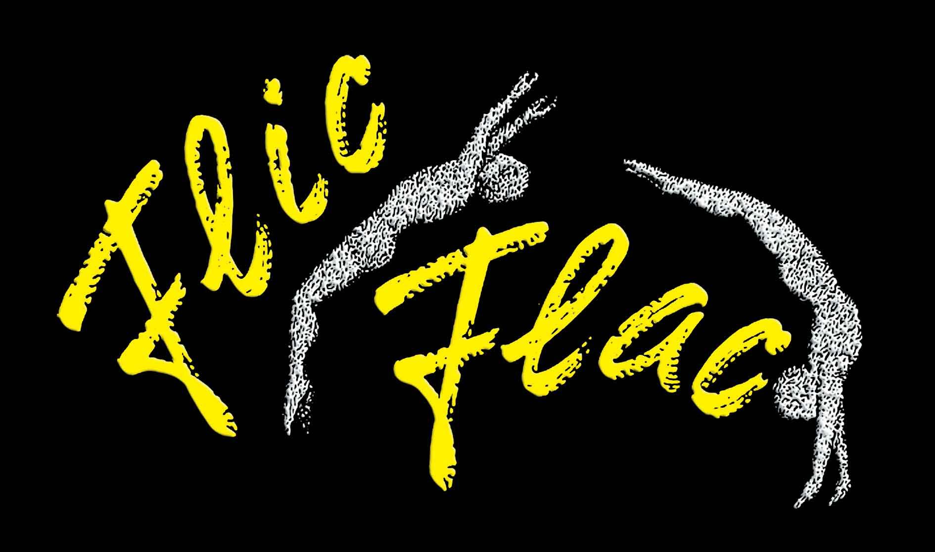 Alle Infos zum Zirkus Flic Flac in Köln