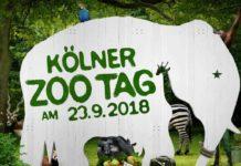 """Kölner Zootag 2018: Bestes """"Beschäftigungsprogramm"""" für die ganze Familie copyright: Kölner Zoo"""