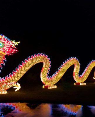 Erneut findet im Kölner Zoo das große China Light Festival statt. copyright: CityNEWS / Alex Weis