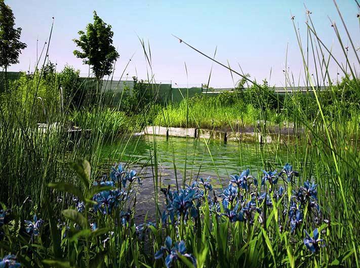 Wasserspaß im Natursee und an den Warmbadetagen copyright: KölnBäder GmbH